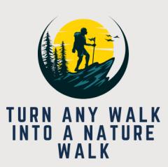 Turn Any Walk Into A Nature Walk
